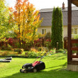Autumn care in the summer garden in the country. — Stock Photo #13257441