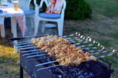 Barbecue in the country. — Stock Photo