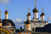 "Golden domes of Russia. Dome ""Ascension of David desert"" - a fun — Stock Photo"