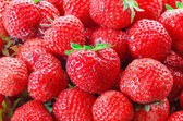 It is a lot of strawberry berries — Stock Photo