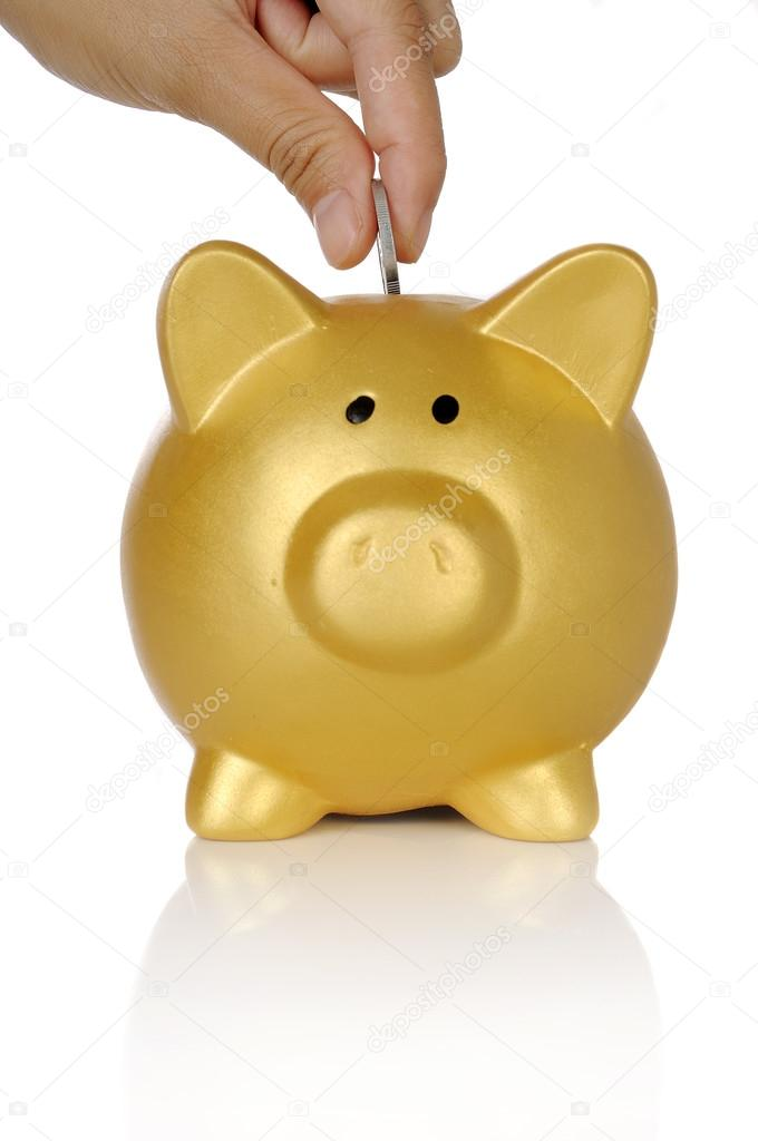 hand put coin into piggy bank  u2014 stock photo  u00a9 leolintang