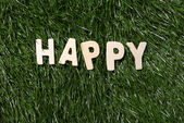 Happy Wooden Sign On Grass — Stock Photo