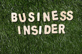 Business Insider Wooden Sign On Grass — Stock Photo