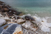 Rocks on the beach, Marina di Pisa, Tuscany, Italy — Stock fotografie