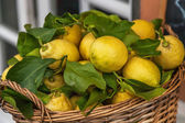 Rustic Basket Of Lemons, Cinque Terre, Italy — Stock Photo