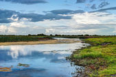 Shannon river landscape, County Offaly, Ireland — Stock Photo