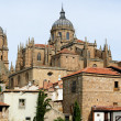 Rooftops and Cathedral of Salamanca, Spain — Stockfoto
