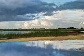 Paisaje del río Shannon, Condado de offaly, Irlanda — Foto de Stock
