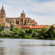 Royalty-Free Stock Photo: Tormes River and Cathedral of Salamanca, Spain