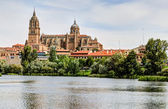 Tormes River and Cathedral of Salamanca, Spain — Stock Photo