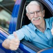 Stock Photo: Man driving a car