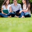 Group of students — Stock Photo #15660613