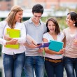 Group of students walking Group of students walking — Stock Photo #15949927