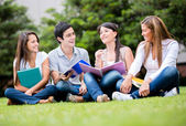 Heureux, groupe de joyeux étudiants des étudiants — Photo