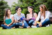 Mutlu grup öğrencileri mutlu grup öğrenci — Stok fotoğraf
