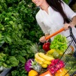 Stock Photo: Womshopping organic Womshopping organic