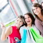 Shopping women Shopping women — Stock Photo #19155085