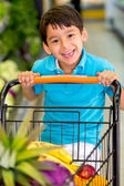 Boy playing with a shopping cart Boy playing with a shopping cart — Stock Photo
