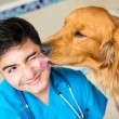 Dog kissing the vet — Stock Photo