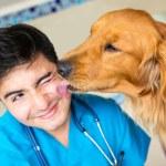 Dog kissing the vet — Stock Photo