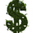 3D grass dollar shape - Stock Photo
