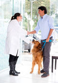 Man handshaking with the vet — Stock Photo