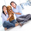 Couple taking dog to the vet - Stock Photo