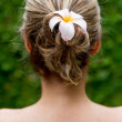 Hairstyle with a flower — Stock Photo #23873285