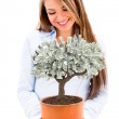Business woman with a money tree — Stock Photo #24058441