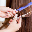 Stock Photo: Cutting split ends of hair
