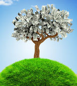3D Money growing on trees — Stock Photo