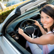 Female driver - Stock Photo