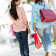 Stock Photo: Female shoppers at mall