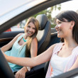 Stock Photo: Women on road trip