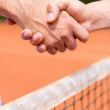 Stock Photo: Handshake at tennis match