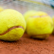 Tennis balls at the court — Stock fotografie