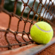 Tennis ball on the net - Stockfoto