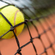 Tennis ball stuck on the net — Stock Photo