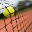 Tennis ball bouncing on the net — Stock Photo