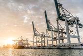 Puerto de miami — Foto de Stock