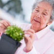Stock Photo: Retired womgardening