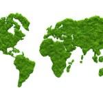 3D grass map — Stock Photo