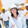 Stockfoto: Engineer at a construction site