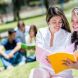 Girls studying outdoors — Stock Photo #30214273