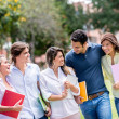 Happy group of students — Stock Photo #30393249