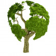 Stock Photo: 3D world tree