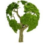 3D world tree — Stock Photo