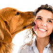Stock Photo: Dog licking womans face