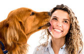 Dog licking womans face — Stock Photo