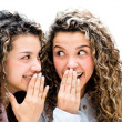 Stock Photo: Sisters gossiping